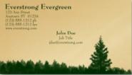Everstrong Evergreen Stock Biz Card